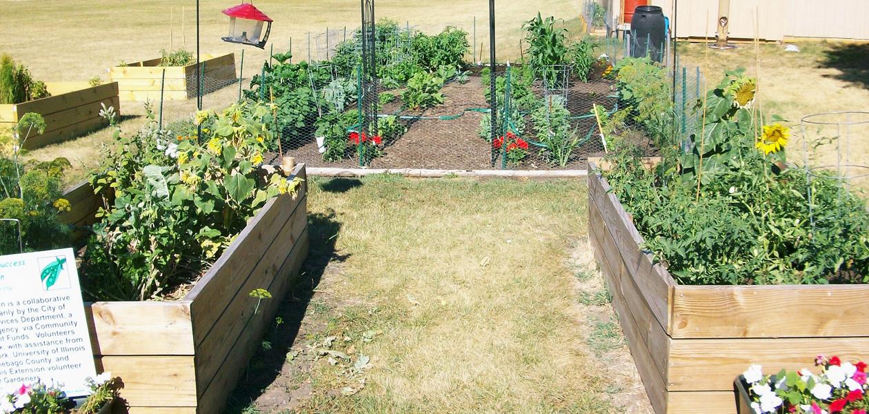 commumity_garden
